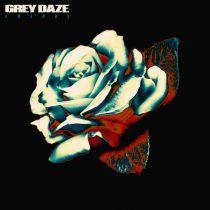 grey daze hysteria