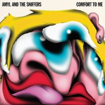 amyl and the sniffers hysteria